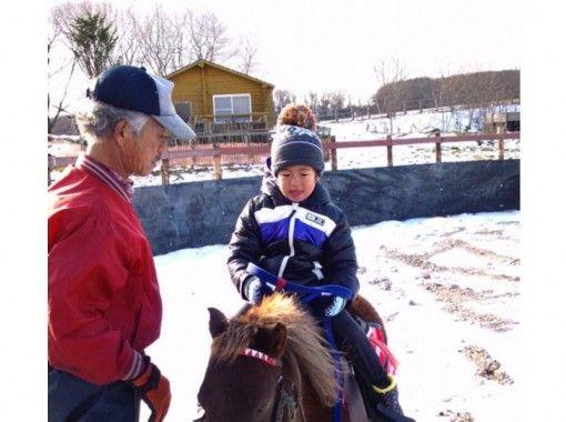 【北海道・登別】ホーストレッキング引き馬コース(20分)