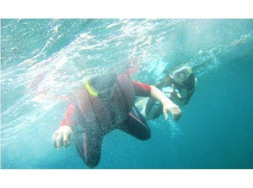 【鹿児島・種子島】シュノーケリングツアー(半日コース)エメラルドグリーンの海を満喫!!の紹介画像