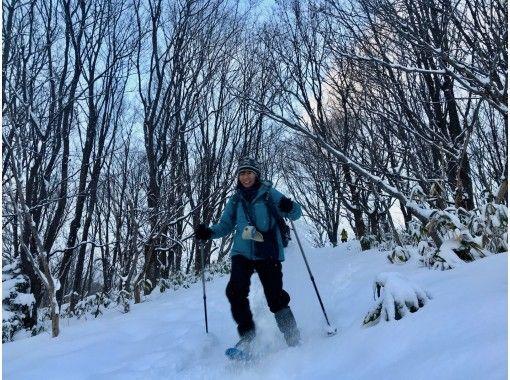 【北海道・札幌】早朝なら高確率でエゾリスやエゾフクロウに会える雪の森スノートレッキング!子供参加OKの紹介画像