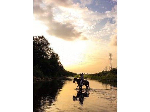 【東京・日野】ホーストレッキング ♪ 90分とTeaTime・ゆっくり乗馬したい方にオススメコース