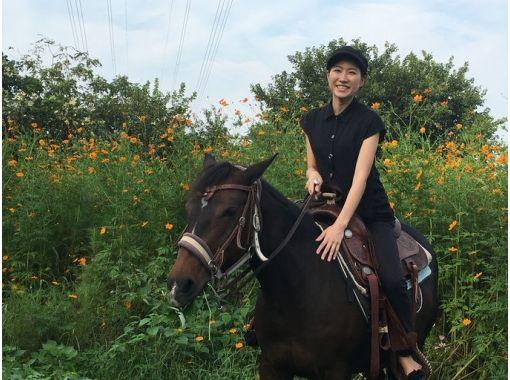 【東京・日野】浅川河川敷で ♪ 貸切乗馬たっぷり180分とゆっくりTeaTime