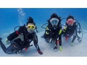 宮古島ダイビングサービス アクアドロップの画像
