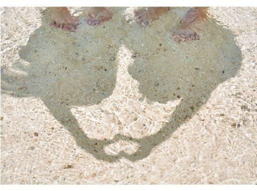 【沖縄・小浜島】幻の島上陸&シュノーケリング体験(半日プラン)※幼児でも参加OK