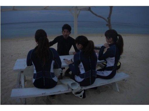 【沖縄・宮古島】海ほたるナイトシュノーケリングの紹介画像