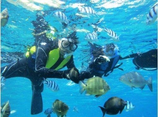 【沖縄・青の洞窟シュノーケル】青の洞窟と熱帯魚の餌付け満喫ツアー!写真&動画無料♪ 沖縄人ガイド♪