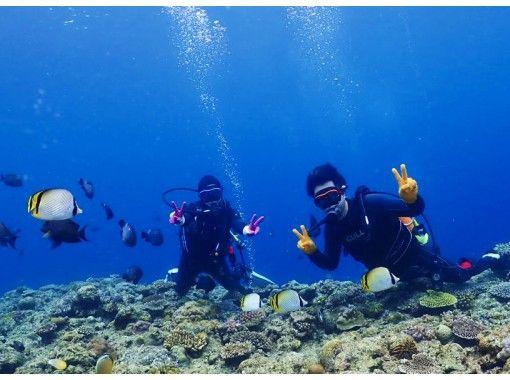 [冲绳/蓝洞/体验潜水]喜欢喂蓝洞和热带鱼!完全包车!热门GoPro照片和视频免费★超级稀有!冲绳地方指南★の紹介画像