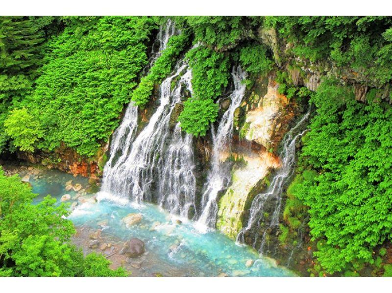 【北海道・美瑛】青い池・しらひげの滝 1日ツアー♪の紹介画像