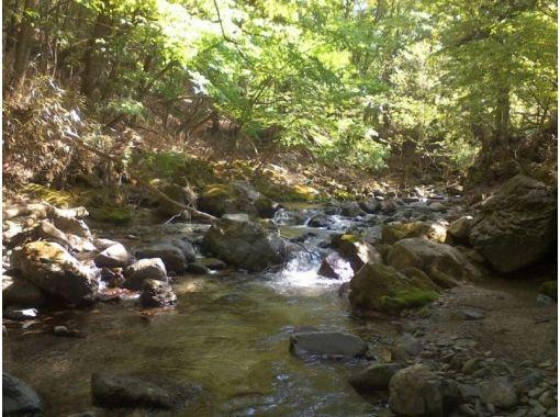【山梨・山中湖・道志みち】山中湖そば・美しい川べりでBBQ ♪ 食材・道具持参でお得プラン(3時間)