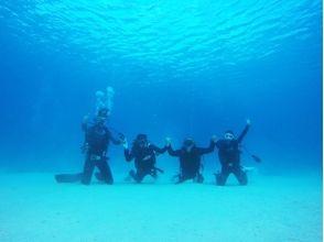 沖縄ダイビング 美ら海グーニーズの画像