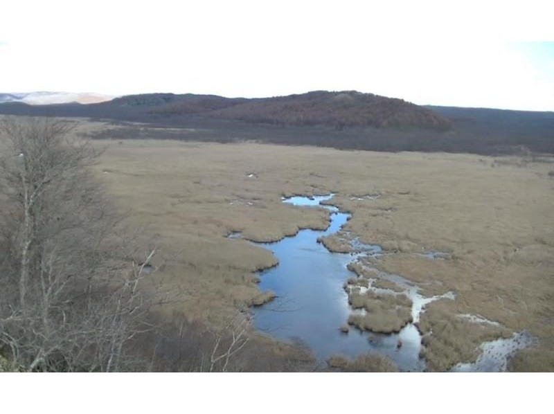 【北海道・釧路 観光ツアー】 プライベートハイヤー利用   釧路湿原探索のたび   6時間の紹介画像