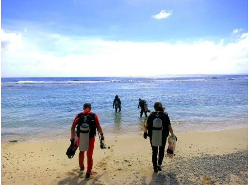 【京都 ⇒ 福井】音海2ビーチダイビング!福井の海へご案内 ♪(Cカード必要)