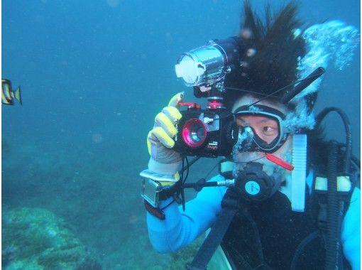 【兵庫県三田発】透明度の高い日本海で初めての 体験ダイビング&水中写真 を楽しもう!(2ダイブ)