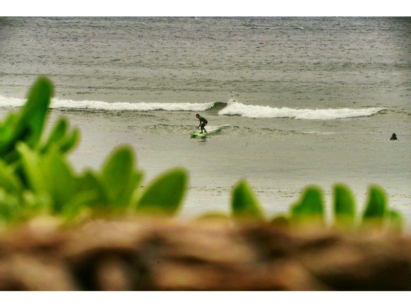 深 キョン サーフィン 写真