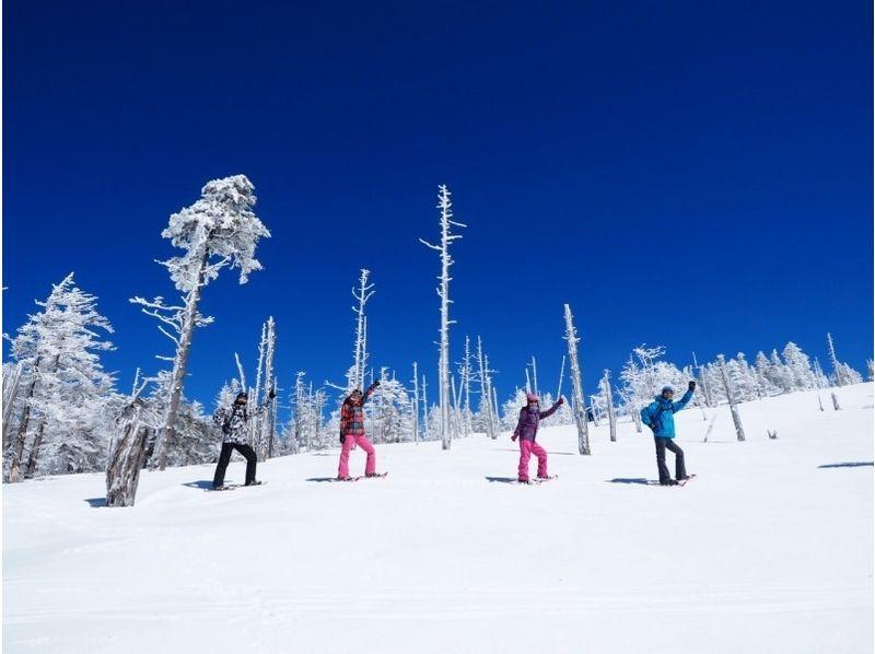 【山梨・北八ヶ岳】雪に覆われた大自然の中を散策!スノーシューツアー(1日コース)の紹介画像