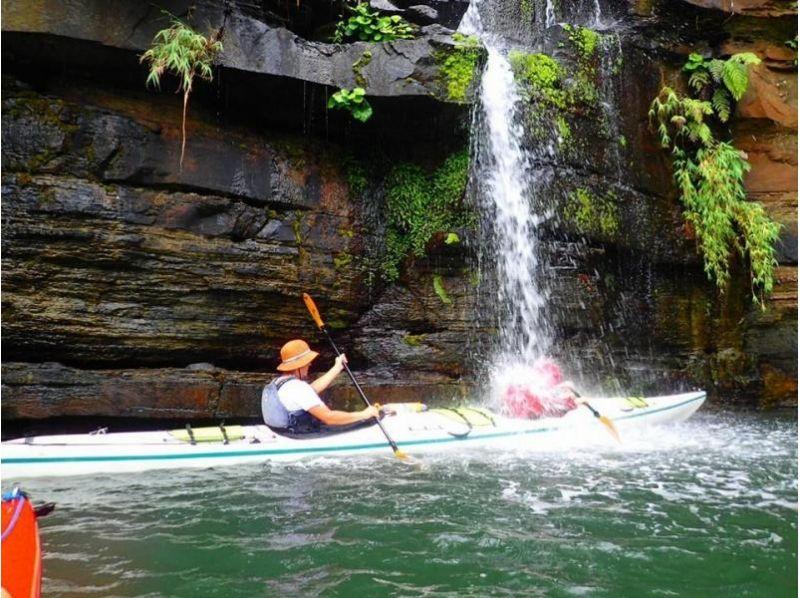 【沖縄・西表島】カヤック&シャワークライミング!西表島の大自然を満喫できるツアー!写真・ランチ付きの紹介画像
