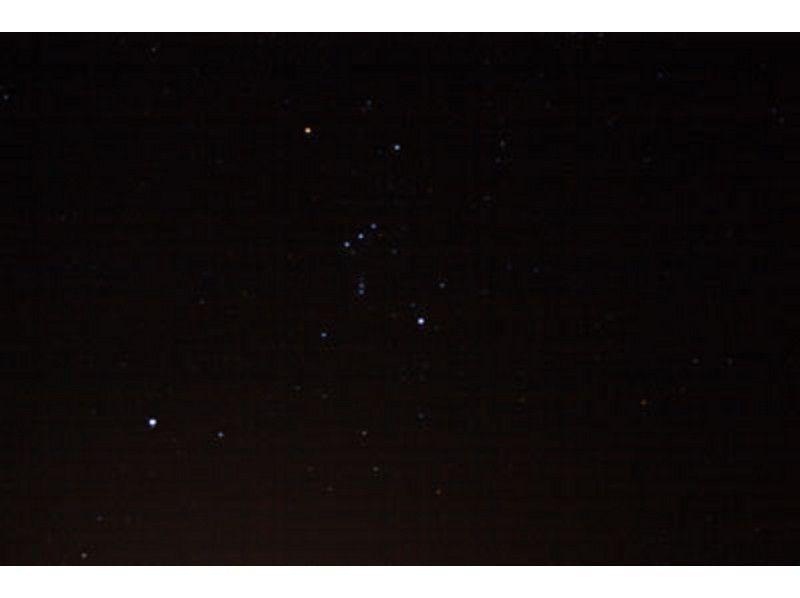 【北海道・札幌でスノーシュー】夜の森林体験ナイトハイキング(ガイド同行)の紹介画像