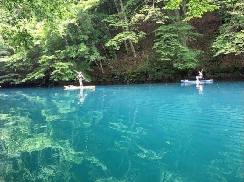 【群馬・みなかみ】水の上をお散歩しよう!半日・SUPツアー(2名以上~)の紹介画像