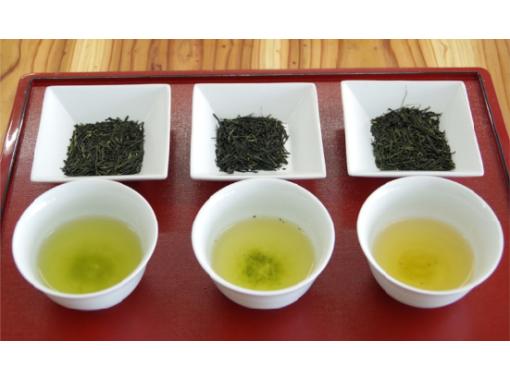 【京都・宇治】抹茶パフェまたは日本茶アイス食べ比べ&日本茶2種飲み比べ (英語OK)