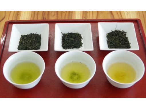 【京都・宇治】和束産抹茶使用!特製ランチ&日本茶2種飲み比べ(英語OK)