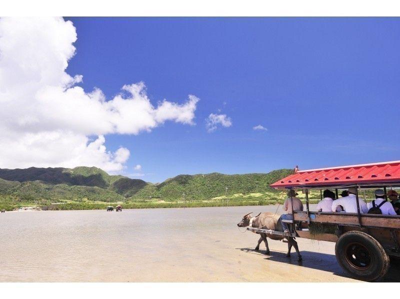 西表・由布・竹富3島めぐりで体験できる魅力を大公開!