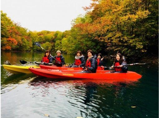 【北海道・支笏湖】クリアカヤックツアー(秋の紅葉シーズン)絶景!ツアー写真プレゼント♪の紹介画像