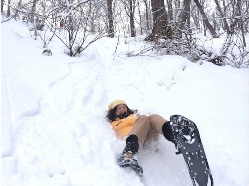 【北海道・札幌】エゾフクロウの棲む冬の森スノーシュートレッキングの紹介画像