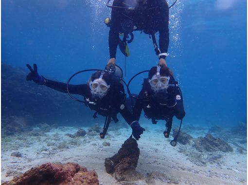 【地域共通クーポンご利用可能!】水中写真・動画無料プレゼント!慶良間半日体験ダイビング(1ダイブ)コース