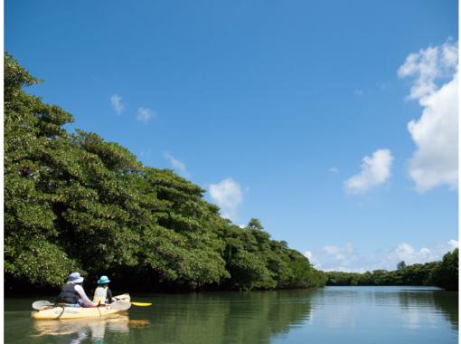 [Okinawa / Ishigaki island] Miyara River Mangrove Canoeing Experience and Tidal Flat Walk! Let's land in the jungle ♪ GoTo Travel Paper Coupons acceptedの紹介画像