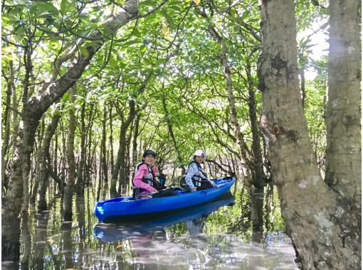 [Okinawa / Iriomote Island] You can play with confidence! Infection spread prevention measures store. Popular No.1 Pinaisara Falls 1-day tour Takinoue & Takitsubo Canoe & Trekkingの紹介画像
