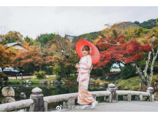 【京都和服寺】租借和服和浴衣 2,300 日元(附赠口罩和发饰租借优惠) 享受和服の紹介画像