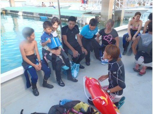 提供地區通用使用優惠券! !! [金貝鯊浮潛]孩子們還好!讓我們和世界上最大的魚金貝鯊一起游泳吧!の紹介画像