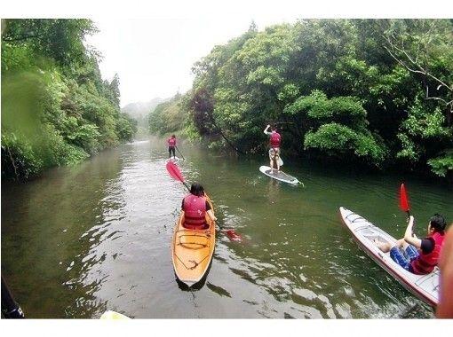 【宮崎・青島】カヌー体験SUPも利用して川を探検★癒しの時間を楽しもう!