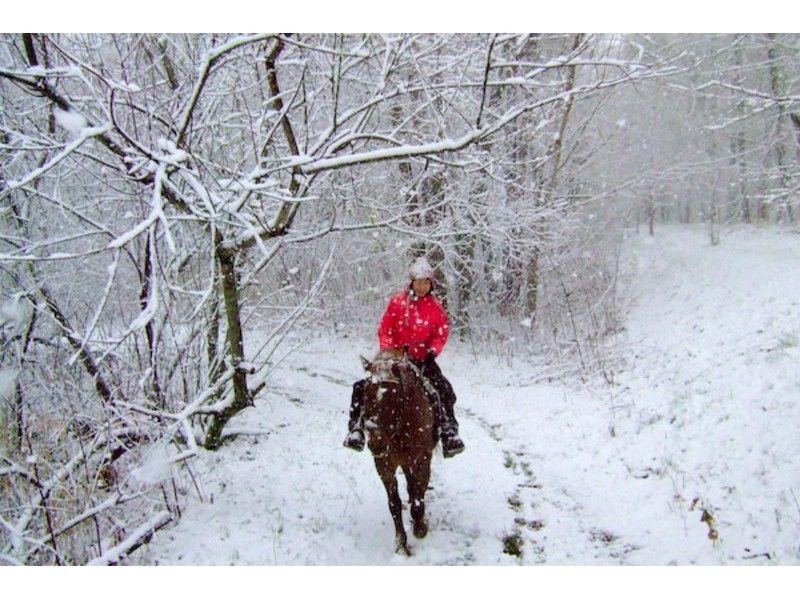 【北海道・帯広】冬季も開催!ホーストレッキング(90分・河川コース)の紹介画像