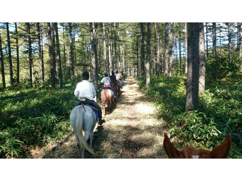 【北海道・帯広】ホーストレッキング(3時間・山林コース)の紹介画像