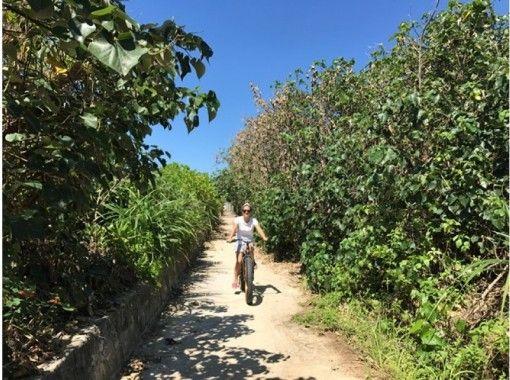 貸切案内【沖縄・名護市・TV放送で大人気】OKINAWAビーチサイクリングツアー★『古民家』『フクギ』も訪れます。