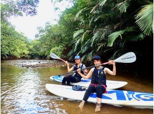 【西表島】【半日】日本最大のマングローブから神秘のジャングルへSUPで大冒険!【写真データ無料】カップル・女性・ファミリーにオススメ!の紹介画像