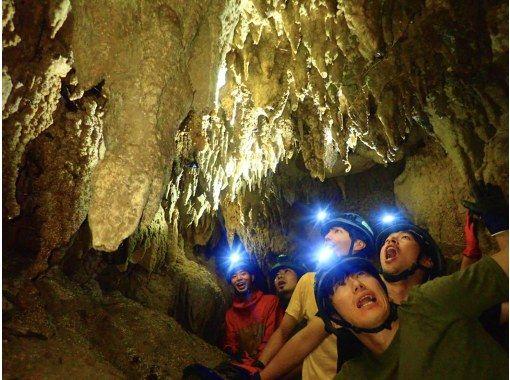 [西表岛/半天] ④ 世界遗产探险之旅(可选红树林SU或独木舟&石灰岩洞穴探险)[照片数据免费]の紹介画像