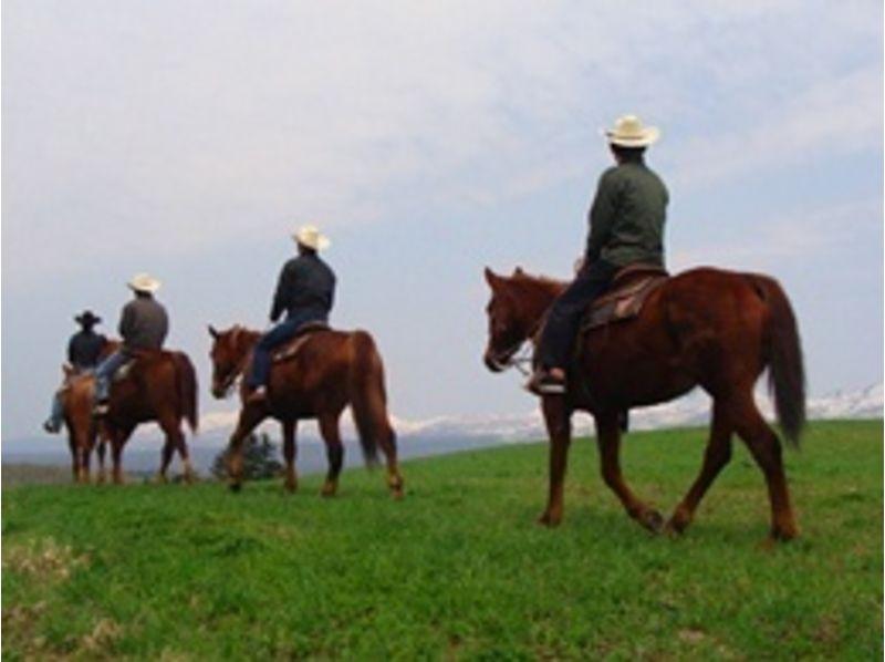 【北海道・ニセコで乗馬】経験者限定!ホーストレッキング(180分)の紹介画像