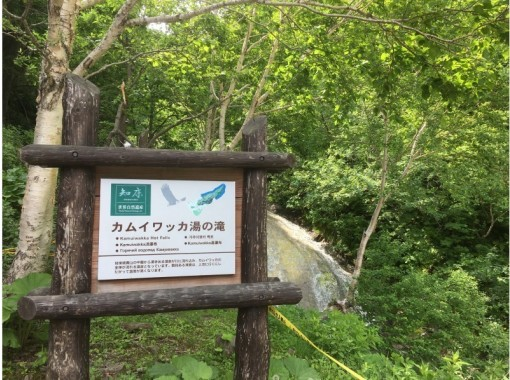 SS【北海道・知床】知床ウトロ 秘境「神の水 カムイワッカシャワークライミングツアー 」無料送迎付き!