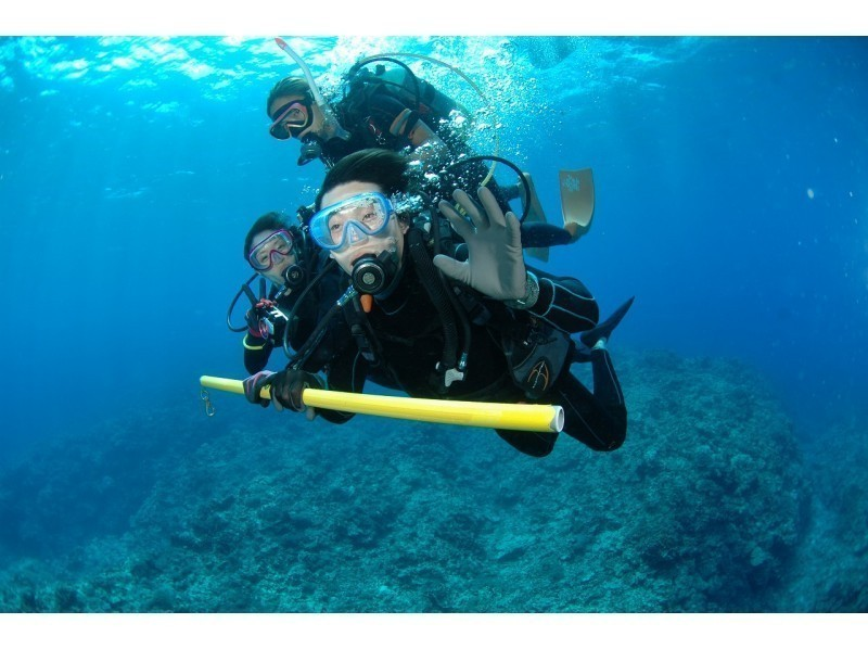 Alpha Dive Okinawa Recommended