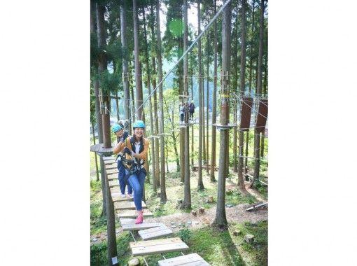 【福井・池田町】樹の上のアスレチックで遊ぼう!ディスカバリーコース