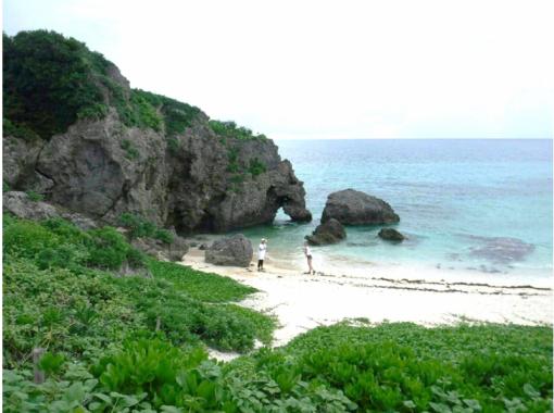 [沖縄-宮古島】指導Omakase半日課程悶棍,海龜搜索和無人機射擊也提前!含餐!の紹介画像
