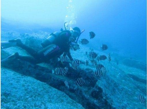 [Hokkaido ・ Shakotan Mikuni] Advanced Water Diver Course [Diving License training] ★ warm water shower Yesの紹介画像
