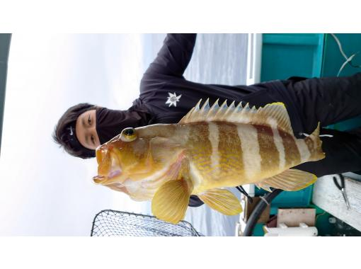[Wakayama / Susami Town] Let's aim for the big game! Swim fishing (Nomase fishing) [Regional common coupon handling]の紹介画像