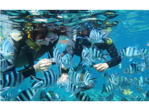 【沖縄・宮古島】ジェットスキーで行く海亀大冒険シュノーケル