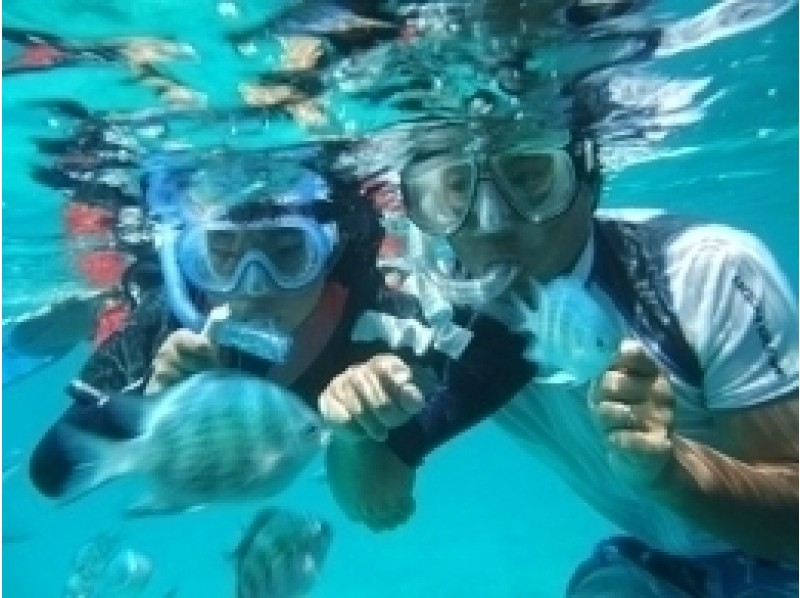 【沖縄・石垣 パナリ島】釣りとシュノーケルの欲張り半日コースの紹介画像