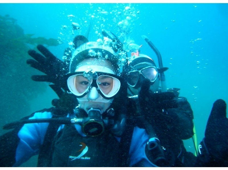 ダイビング体験ツアーの種類 熱海おすすめ