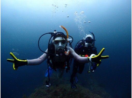 【静岡・伊豆・熱海】初心者歓迎!海中世界を覗こう ♪ 体験ダイビング(90分)「地域共通クーポン利用可能プラン」