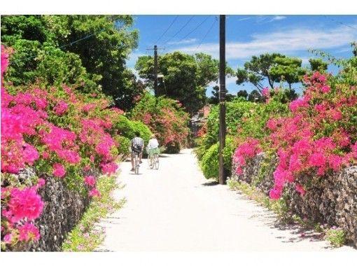 【人気の竹富島へ行こう!】竹富島レンタサイクルセット‹Tk-5›