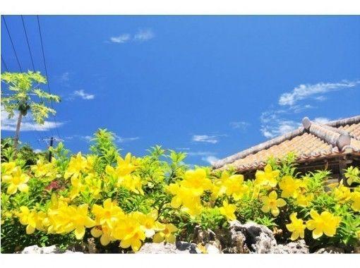 【竹富島へ行こう!】竹富島レンタサイクルセット‹Tk-5›